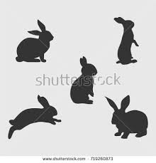 rabbit rabbit rabbit stock images royalty free images vectors