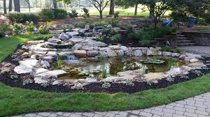 Backyard Fish Ponds by Fish Pond Projects Ideas Columbia Sc Augusta Ga Mccormick