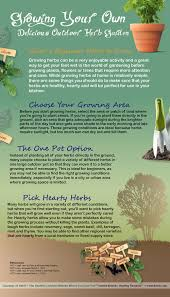 growing your own herb garden infographic infographics