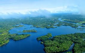 amazon basin the world s one fifth fresh water is found in the amazon basin