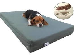 choose a special hammock dog bed extra large dog beds