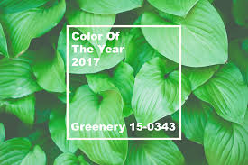 pantone u0027s 2017 color of the year greenery how to embrace it