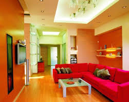 singular living area wall and false ceiling color paint photo