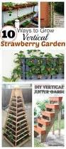 grow vertical strawberry garden in 10 diy ways