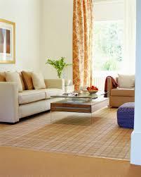 Best Living Room Carpet by Modern Home Interior Design Best Carpet For Family Room Living