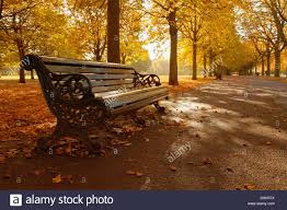 Park Bench Scene An Autumn Scene Greenwich Park London Uk Stock Photo Royalty