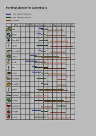 Vegetable Garden Planting Calendar by Grow Your Own Vegetables Avocado