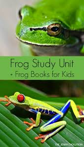 49 best frogs and amphibians images on pinterest frogs pond