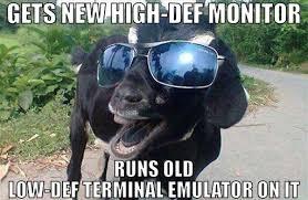 Meme Def - goat meme gets new high def monitor runs old low def terminal