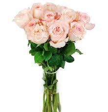 flowers in bulk bulk flowers garden roses like a