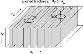 the paradox of anisotropy in electromagnetic loop loop responses