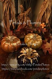 Where To Buy Fall Decorations - 97 best wreaths u0027petals and plumes u0027 images on pinterest