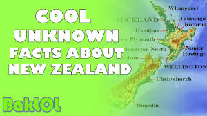 cool unknown facts about new zealand