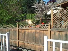 Backyard Privacy Screen Ideas by Backyard Privacy Screen Ideas Apartment Therapy