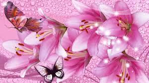 flowers water butterflies flowers firefox drops persona