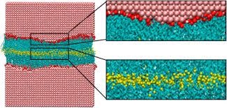 Nonequilibrium molecular dynamics simulations of stearic acid     ScienceDirect