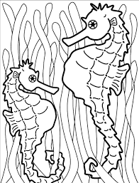 best ideas of seahorse coloring sheet 2017 also job summary