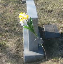 Four Flags Area Credit Union Bellevue Cemetery Committee Wants No More Flag Holders Says They