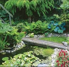 the 25 best small garden ponds ideas on pinterest small