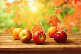 cuisine automne fond d écran pommes d automne sur une table my hd wallpapers