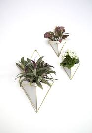 Indoor Wall Planters by White Umbra Trigg Geometric Wall Planter Set Decor Desirables
