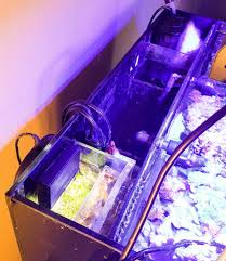 best led refugium light build a simple aio refugium for better water quality reef pursuits