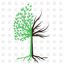 tree half green half dead royalty free vector clip image