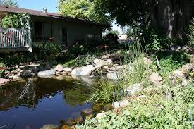 lawson garden pond u0026 house minnesota prairie roots