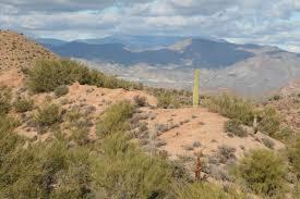 arizona mountain and ski properties for sale mountain and ski