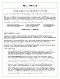 systems analyst resume doc business analyst resume by adam sandler example of business