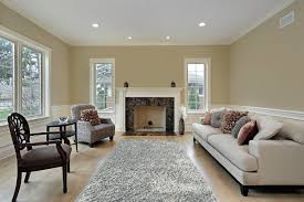 Place Area Rug Living Room Hall White Area Rug With White Ceiling Wall Design And Grey Rug