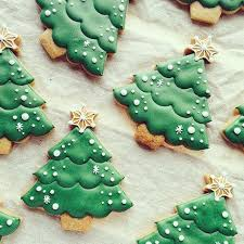 pretty christmas trees kitcheneight pinterest hamza u20aa the land