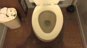 Eljer Patriot Toilet Elongated 1976 Mansfield Imperial Toilet Youtube