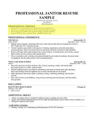Profile Examples For Resume by Profile For Resume Examples It Resume Examples Executive It