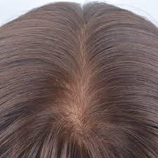 human hair wiglets for thinning hair 8 best women s human hair wiglets and hairpieces for thinning hair