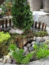 miniature fairy garden with sedums false cyprus and mosses
