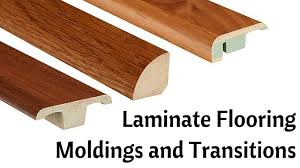 laminate flooring moldings and transitions