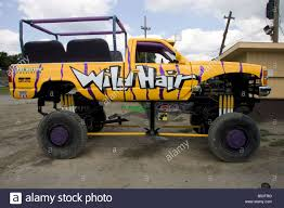 wild hair ride truck monster trucks wiki fandom powered by wikia