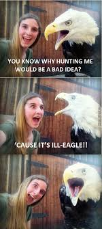 Funny Eagles Meme - what do you call a girl talking to an eagle i fucking maniac by