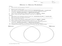 Meiosis Matching Worksheet Answers Mitosis Meiosis Worksheet Semnext