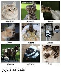 Cat Heavy Breathing Meme - oh my god heavy breathing jonathan joeseph jotaro josuke giorno