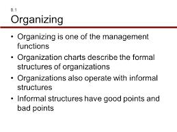 one organization organization structure and design ppt video online download