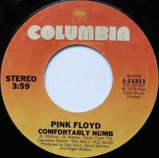 Comfortably Numb Orchestra Comfortably Numb Hey You By Pink Floyd Single Art Rock