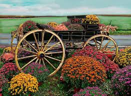 wheel tag wallpapers country garden flowers nature wagon floral