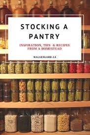 25 best no pantry ideas on pinterest no pantry solutions