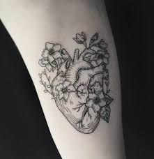 Anatomy Of The Heart Lab Best 25 Anatomical Heart Tattoos Ideas Only On Pinterest