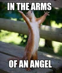 Angel Meme - meme creator in the arms of an angel meme generator at