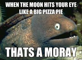Memes About Pizza - the best pizza memes hungry howies