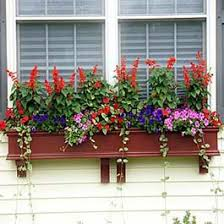 huge gallery of window boxes to share on pinterest