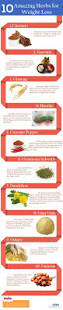 best 25 herbs for weight loss ideas on pinterest weight loss